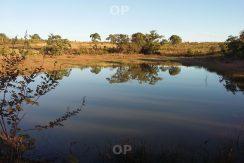 Fazenda Sul de Tocantins – 15.600 hectares